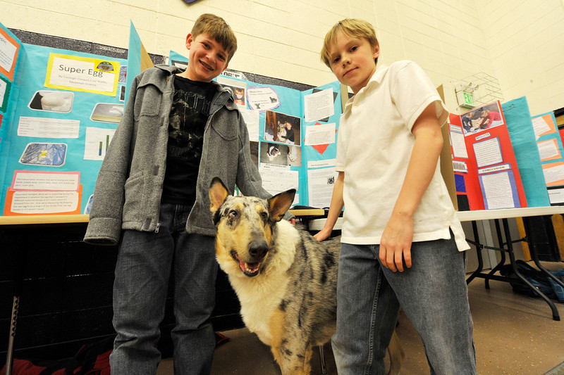 "Walt Hester | Trail Gazette<br /> Greyson Pack and Spencer McMillin smile with their science fair partner, Maverick, at the middle school scirnce fair on Wednesday. The pair were persuing the question, ""Can dogs understand language,"" to which they found that Maverick understands non-verbal cues much more than actual words."