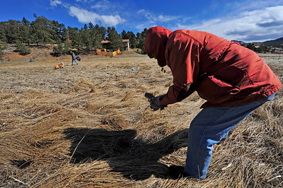 Walt Hester | Trail Gazette Dave Born, right, and Andy Pierce comb the wetland around the Scott Ponds on Saturday. Saturday was the annual River Cleanup around Estes Park in anticipation of next weekend's Duck Race.