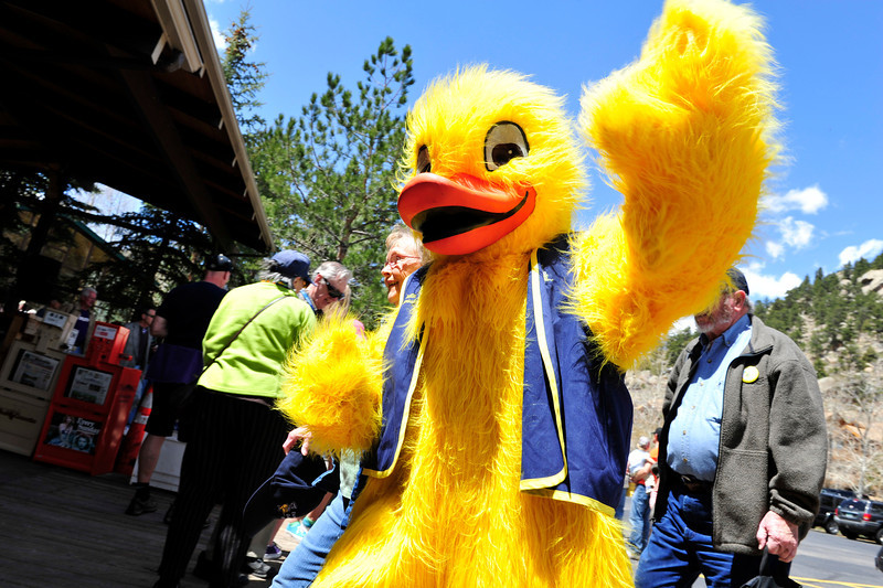 Walt Hester | Trail Gazette<br /> Quilten T. Canvasback waves to adoring fans after hi sarrival at the starting line of the annual Duck Race on Saturday. A giant, bright yellow duck attracts a lot of attention to the cause.