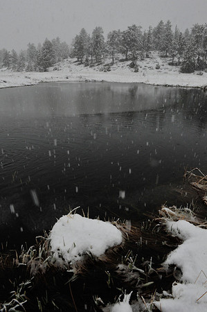 Walt Hester   Trail Gazette<br /> As temperatures fall on Wednesday, snow begins to accumulate around Estes Park. As much as 16 inches of new snow is expected in parts of the national park, further hampering road clearing on Trail Ridge Road.