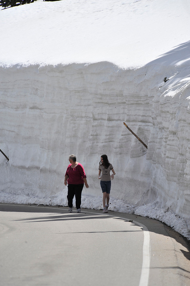 Walt Hester | Trail Gazette<br /> Visitors walk along Trail Ridge Road under 15-foot-high snow banks on Sunday. Snow banks reach another 10 feet higher around Rock Cut and above the Lava Cliffs.