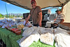 Walt Hester | Trail Gazette<br /> Arturo Gandarilla smiles at the beautiful opening day of the Estes Valley Farmers' Market on Thursday. Gandarilla, his parents, Maria and Juan, and many more venders will be at the Stanley Fair Grounds every Thursday morning through September.