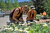Walt Hester | Trail Gazette<br /> Hannah Roetzel, Hunter Schumaker and Laura Thompson plant flowers in front of the Estes Valley Public Library on Tuesday. The town pants flowers throughout Estes Park every summer.
