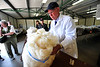 Walt Hester | Trail Gazette<br /> Mike Monell gets a close look at a fleece during judging on Saturday. The judges look for color, texture, length, among other things.