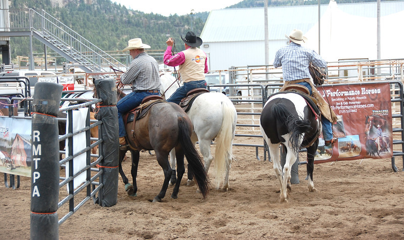 The three-member team finishes up a successful penning of three head of cattle during Saturday's Rocky Mountain Team Penning Association competion held at the Fairgrounds at Stanley Park.