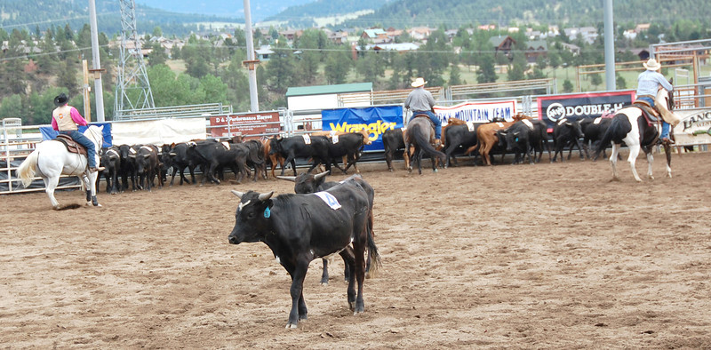 The team of three riders turns back to the herd of cattle after successfully cutting two of the three designated animals from the group. The team eventually found and cut the third designated animal from the group and successfully put them in a pen at the opposite end of the arena.