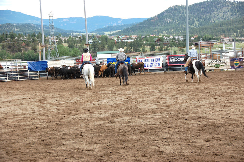 A team of three riders approach the herd of cattle prior to their attempt to cut three specific animals from the group and move them to a pen on the other end of the arena. The animals all had numbers taped to their sides and the contestants did not know which number they were to target until they entered the arena.