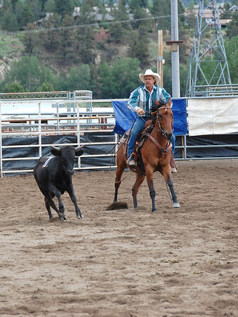 A rider moves a steer toward a pen after the animal was cut from the herd during the July 9 session of the Rocky Mountain Team Penning Association competiton that was held in Estes Park over the weekend.