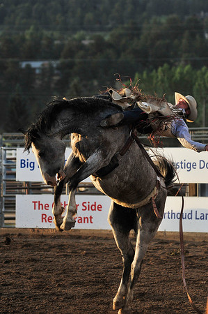 Walt Hester | Trail Gazette<br /> Chris Harris of Itasca, Texas, is nearly dumped over backward on his ride of the bareback event on Thursday night.  Judges awarded Harris a reride, as his horse, Paper Cut, reared back instead of bucking its rear legs up.