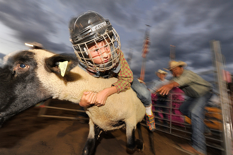 Walt Hester | Trail Gazette<br /> A mutton buster hangs on as his mount bolts out of the chute on Friday. Mutton busting is a way for children to get involved in the action.