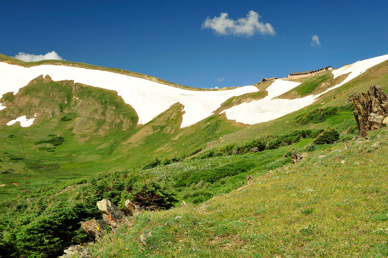 Walt Hester | Trail Gazette<br /> Snow clings stubbornly to slopes below the Alpine Visitors Center on Wednesday. Recent heat has melted snow to the point usually seen in early July.