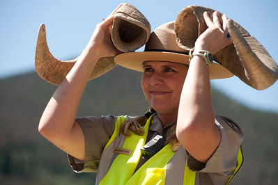 Walt Hester | Trail Gazette Interperative Ranger Barbara Hoppe adds a memorable spin to her Bighorn talk on Friday at Sheep Lake. Interperative rangers inform visitors about woldflowers, wildlife, geology and even stars in the night sky.