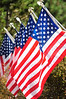 Walt Hester | Trail Gazette<br /> A home owner in Carriage Hills displays flags for Labor Day on Monday.