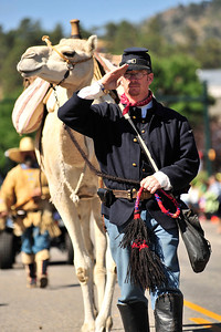 Walt Hester | Trail Gazette Doug Baum of the Texas Camel Corps salutes the crowd with his camel during Saturday's parade. The army organized the camel corps for desert operations in the mid-ninteenth century but the animals' unpleasant personalities and tendency to scare horses led to the coprs' demise.