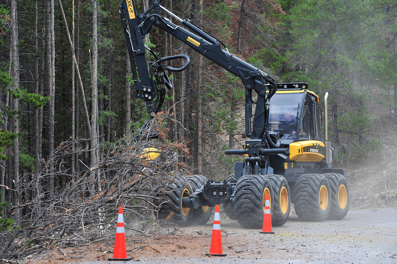 Walt Hester | Trail Gazette<br /> A large machine cuts and fells beetle-kill trees in Glacier Basin on Wednesday. The park plans cutting opperations along Bear Lake Road and Trail Ridge Road, as well.