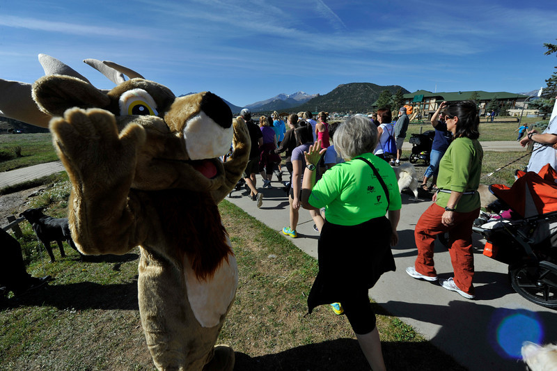 Walt Hester | Trail Gazette<br /> An unusually fluffy bull sends the runners on their way around Lake Estes on Saturday.