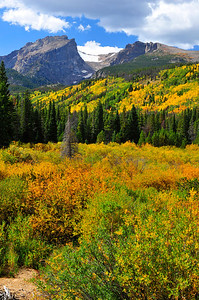 Walt Hester | Trail Gazette Fall foliage spreads across the valley below Hallett Peak and Flattop on Tuesday. Forcasters predict this weekend to be the peak of the fall color on Northern Colorado.