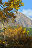 Walt Hester | Trail Gazette<br /> Aspens frame a view of Longs Peak along HWY 7 on Wednesday. Aspens and willows are in all stages of fall color along the drive between Estes Park and Allenspark.