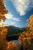 Walt Hester | Trail Gazette<br /> Golden aspen leaves decorate the slopes overlooking Bear Lake on Sunday. Aspens are in a wide range of autumnal change around the national park and Estes Park.