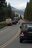 Walt Hester | Trail-Gazette<br /> Cars line up on either side of construction on Trail Ridge Road in the Kawuneeche Valley on Wednesday. Workers feel they will be done with construction next week.