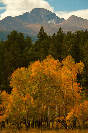 Walt Hester | Trail-Gazette<br /> Longs Peak towers over aspens and the North Lateral Moraine near Beaver Meadows on Tuesday.