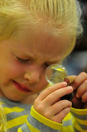 Walt Hester | Trail-Gazette<br /> Paige Barker, 6, gets a closer look at the stromatolite sample on Friday.