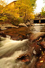 Walt Hester | Trail Gazette<br /> The Fall River rushes under Elkhorn Avenue and past golden trees on the way through downtown Estes Park on Monday. After nearly six weeks of high water in summer, the river has settled back into its normal flow.