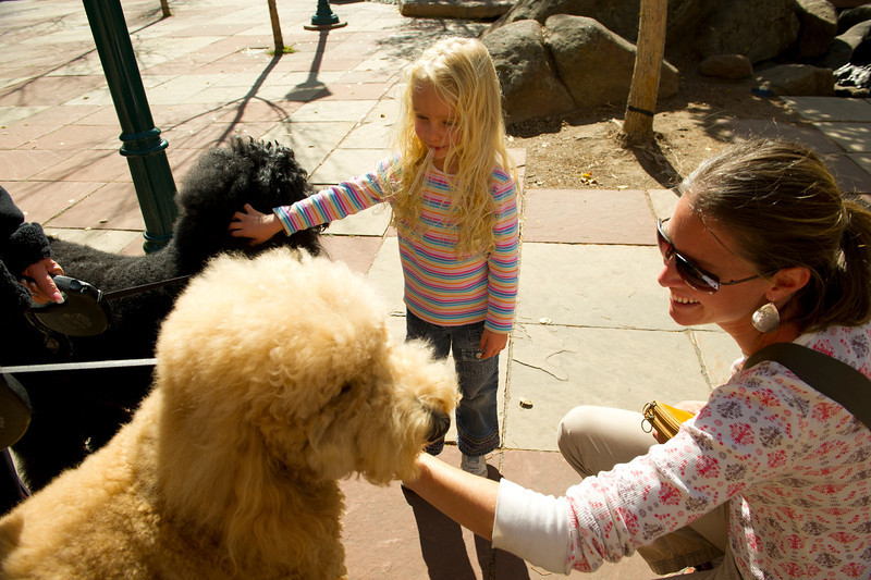 Walt Hester | Trail Gazette<br /> Tayen, 4, and her mother, Jeni Wells pet poodles Maxie, white, and Madison in Riverside Plaza on Sunday.