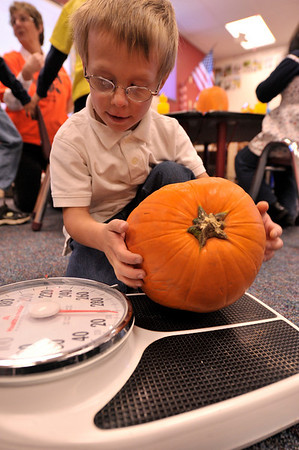 Walt Hester | Trail-Gazette<br /> Estes Park kindergarten student Blake Honeycutt, 5, weighs his pumpkin in class on Thursday. The pumpkin was one of many donated by Safeway and distributed by the Rotary Club of Estes Park.