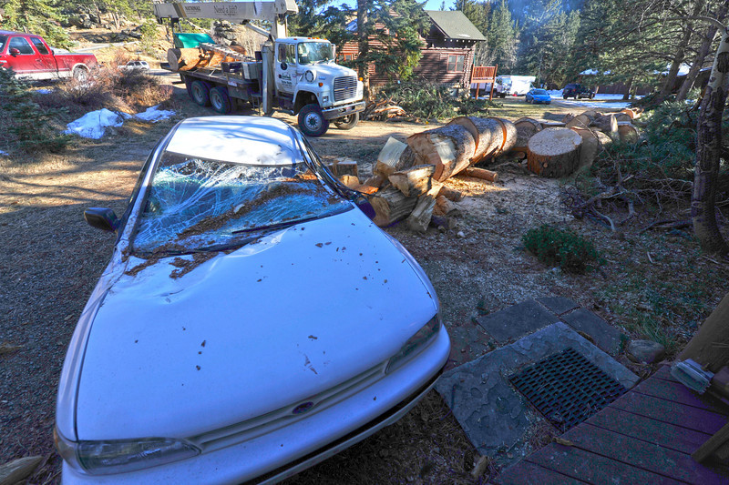 Walt Hester | Trail Gazette<br /> The remains of a crushed car sit on Wednesday next to the remains of the tree that fell on it during last weekends wind storm. High winds were funneled into to the narrow cayon resuylting in lots of downed trees.