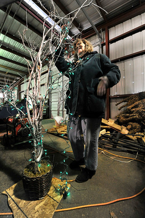 Walt Hester | Trail Gazette<br /> Jeanne DeMark strings holiday lights on a small tree fpr a float. While dedicated and energetic, Young can't get all of the floats ready by himself.