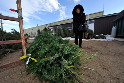 Walt Hester   Trail Gazette Jackie Love of Estes Park picks up her Christmas Tree at the Boy Scouts tree lot on Tuesday. The Boy Scouts are again selling fresh trees from now through Christmas.