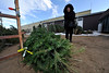 Walt Hester | Trail Gazette<br /> Jackie Love of Estes Park picks up her Christmas Tree at the Boy Scouts tree lot on Tuesday. The Boy Scouts are again selling fresh trees from now through Christmas.