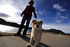 Walt Hester | Trail-Gazette<br /> Kiefer, a Pom mix, checks out the Lake Estes Trail ahead of owner Joanna Stensland on Thursday. While temperatures were moderate on Thursday, colder, snowy weather is expected for the weekend.