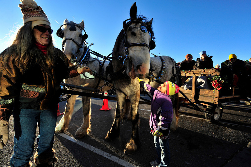 Walt Hester | Trail-Gazette<br /> Eight-year-old Madisyn Adas of Highlands Ranch smiles as she pets a Shire horse at the Town Hall as Audrey Stockton from Big Little Shires of LaPort, Colo. steadies the huge animals on Friday. Thousands of visitors were on hand to help Estes Park celebrate the start of the Holiday Season on Friday with wagon rides, a visit from Santa and the Catch the Glow Parade.