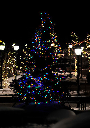 Walt Hester | Trail Gazette<br /> Colorful lights adorn the Town Christmas Tree in Bond Park. The town hope to make the tree and annual tradition.