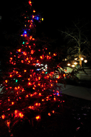 Walt Hester | Trail Gazette<br /> The Prospect Park Living Center's tree glows on Wednesday evening.
