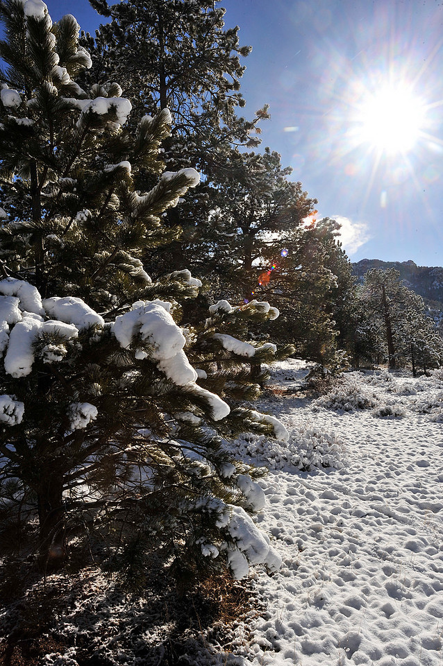 Walt Hester | Trail Gazette<br /> Snow and sunshine creates a pretty winter landscape on Sunday. The sunshine quickly melted the snow after the fast-moving snowshower.