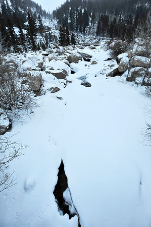 Walt Hester | Trail-Gazette<br /> Ice and snow all but obscure the falls of the Alluvial Fan in Horseshoe Park on Monday.