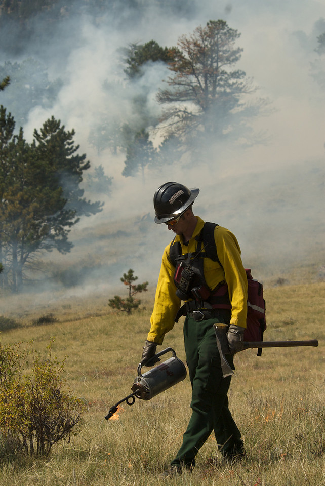 Photo by Walt Hester<br /> Rocky Mountain National Park fire fighter helps with a controled burn above Beaver Meadows last fall. The park plans another burn this autumn.