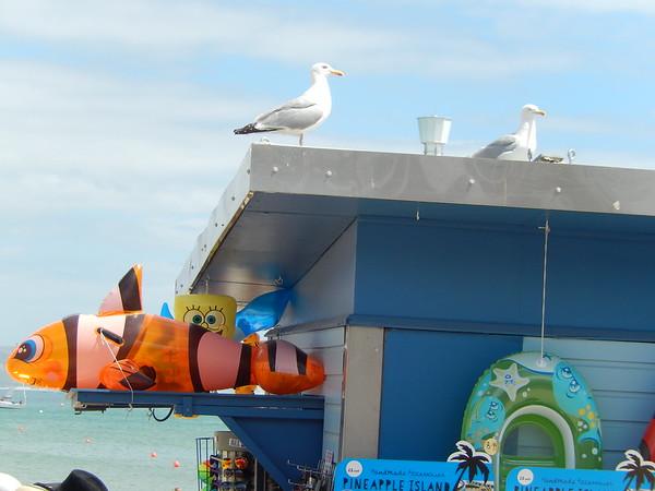 Oh I do like to be beside the seaside!