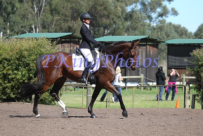 State Dressage Championships