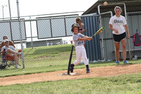 2014 LITTLE LEAGUE BASEBALL / SOFTBALL