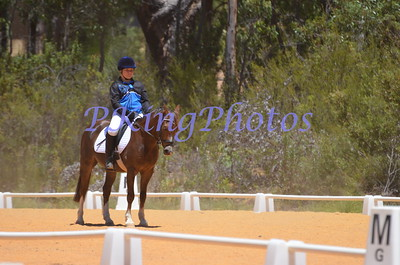 Wooroloo dressage series day 1