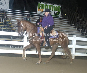CLASS 19  TRAIL PLEASURE ADULT WESTERN SPECIALTY