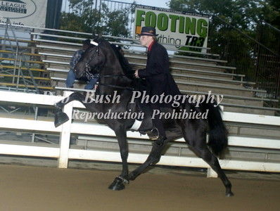 CLASS 26  -  2 YR OLD MARES  & GELDINGS