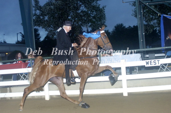 CLASS 34  - 3 YR OLD MARES & GELDINGS   RC