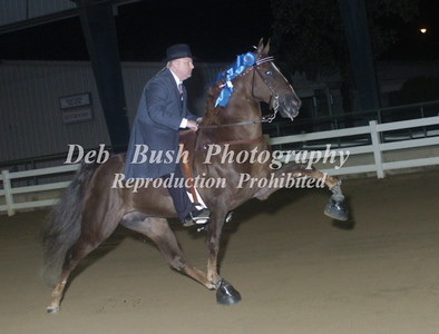 CLASS 41  AMATEUR OWNED & TRAINED