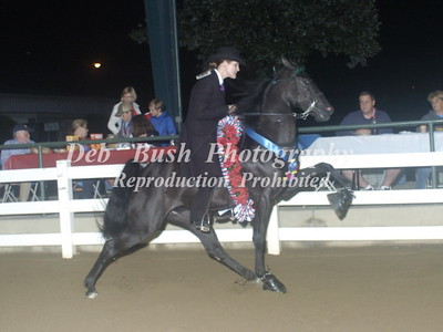 CLASS 44 ADULT YOUTH  PONY CHAMPIONSHIP