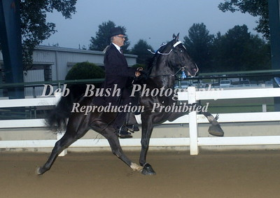 CLASS 8  AMATEUR 50 AND OLDER SPECIALTY
